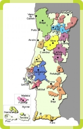 Wine Regions in Portugal